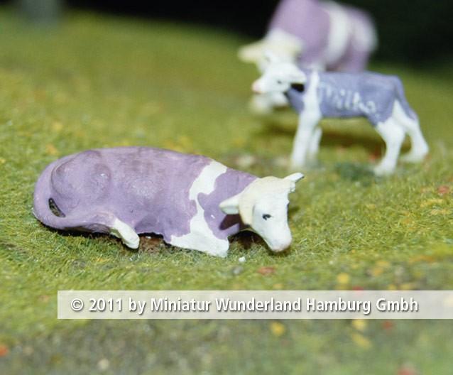 Panini 2011 Bild Nr 078  Miniatur Wunderland