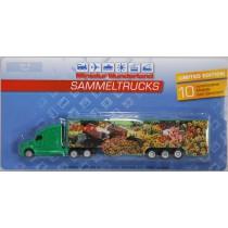 Miniatur Wunderland Truck (4) : Harz H0 (1:87)